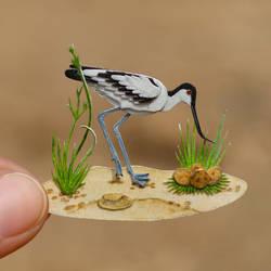 Pied Avocet - Paper Cut Birds by NVillustration