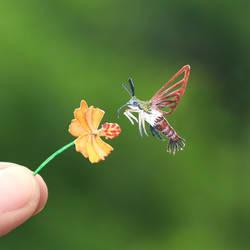 Clearwing Hummingbird Moth- Paper cut bird