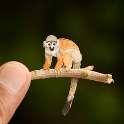 Squirrel Monkey - Paper cut art
