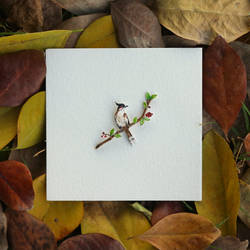 Red whiskered Bulbul - Paper Cut Birds by NVillustration