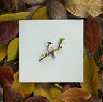 Red whiskered Bulbul - Paper Cut Birds
