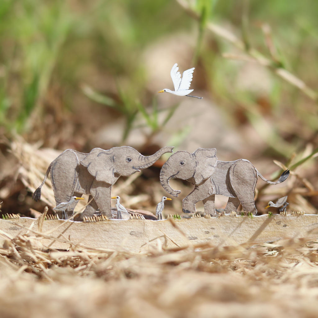 Baby African Elephants - Paper Cut Animals
