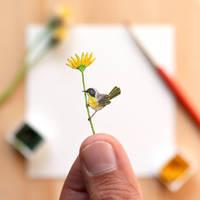The Yellow throat - Paper Cut art