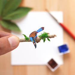 The Plate-billed mountain Toucan - Paper Cut art