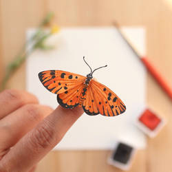The Tawny Coster Butterfly - Paper Cut art