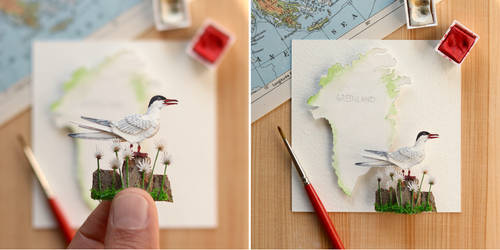 The Arctic Tern - Paper Cut art