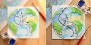 The Arctic Tern - Paper Cut art