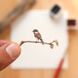 The chestnut-backed chickadee - Paper Cut art