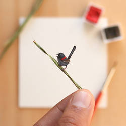 The Red-backed fairy wren - Paper Cut art