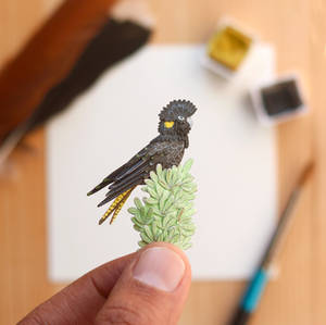 The Yellow-tailed Black Cockatoo - Paper Cut art