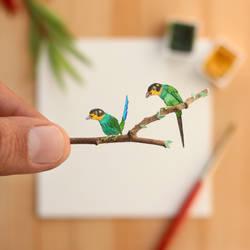 The Long-tailed Broadbill - Paper Cut art