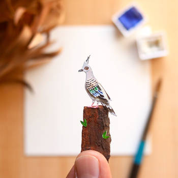 The Crested Pigeon - Paper Cut art