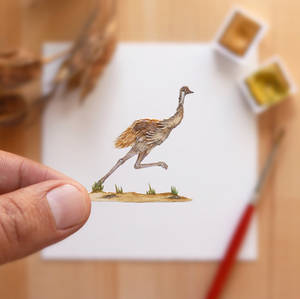 The Emu going full speed - Paper Cut art