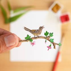 The Little Wattlebird - Paper Cut art