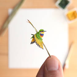 The Blue-breasted Bee-eater - Paper Cut art