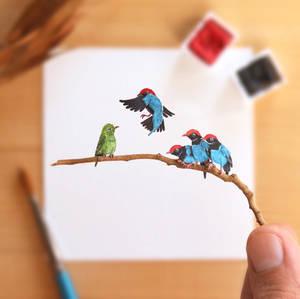 The Blue Manakin mating display - Paper Cut art