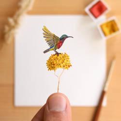 The Van Hasselt's Sunbird - Paper Cut art