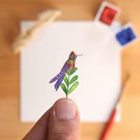 The Rainbow-bearded thornbill Hummingbird