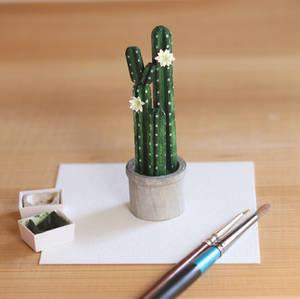 The San Pedro Cactus