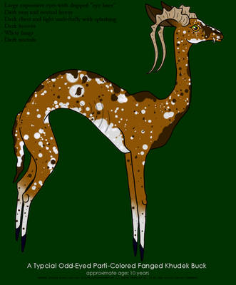 Fanged Khudeck Parti-Colored Buck