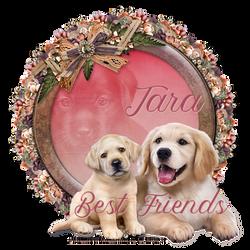 Best Friends Tara