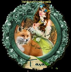 Adventure Fox Tara