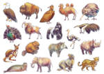 Endangered Species of the Wold Game (Animals)