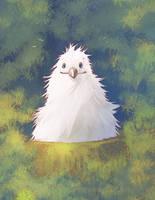Albatross Cute Chick by Fany001