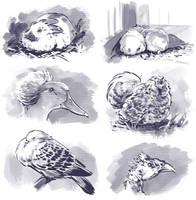 Inktober Animals by Fany001