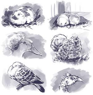 Inktober Animals