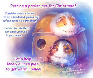 Guinea Pigs Adoption Awareness by Fany001