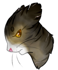 Sharppaw by kittaboo