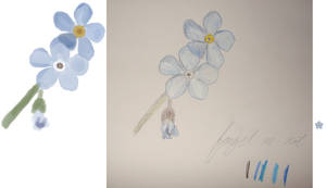 Attempt At Drawing Flowers