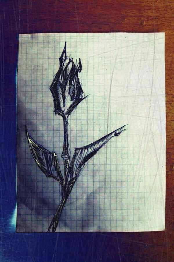 Scream out flower by G0SHK0