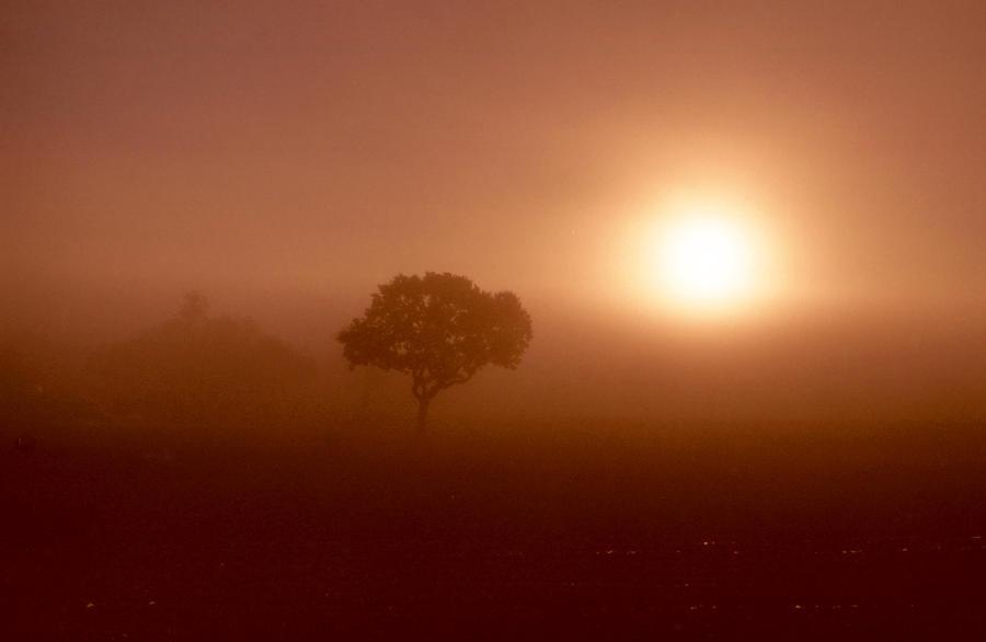 Dawn Fog by Nigel-Kell