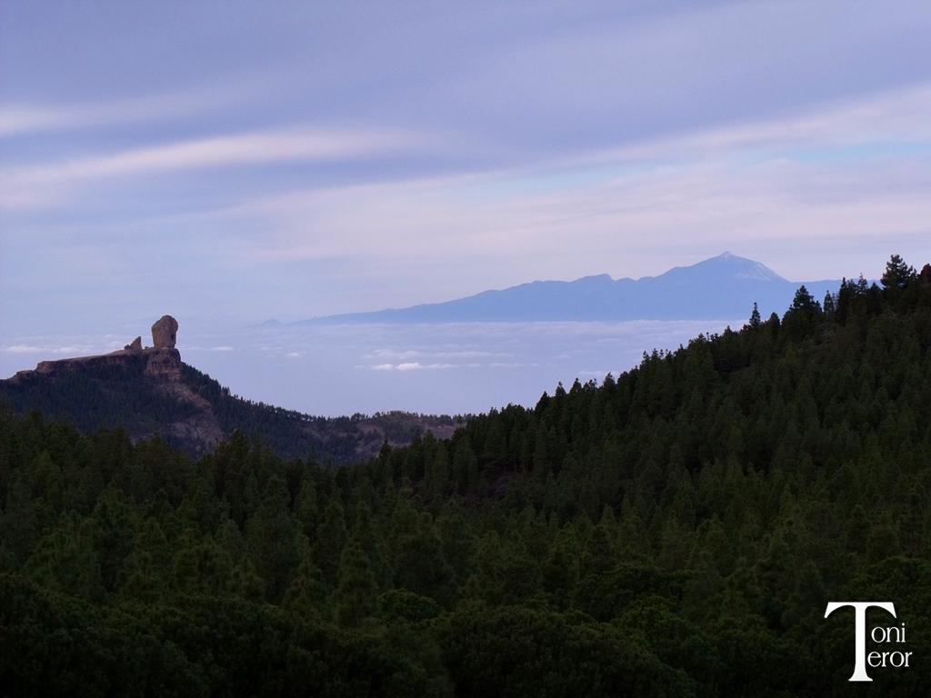 El Roque Nublo y El Teide 1 by ToniTeror
