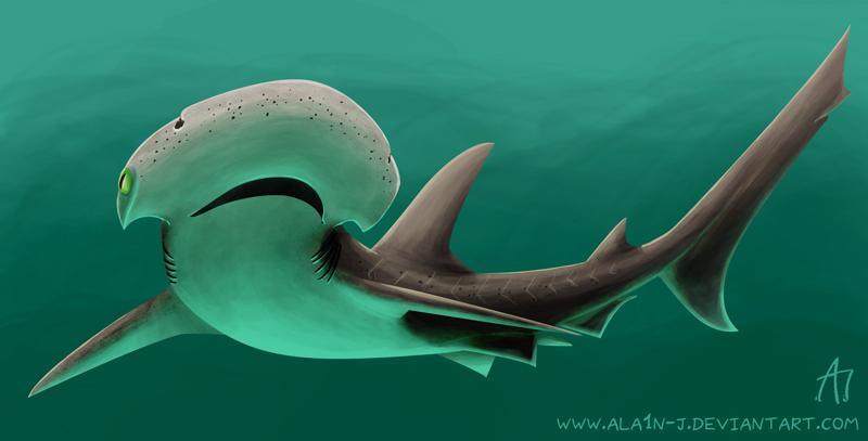 BonnetHead Shark by ALA1N-J