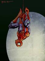 Spider-man Hanging by ParisAlleyne