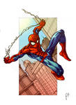 Spider-man Pencils in Colour