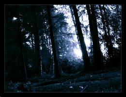 I Walk Where Hobbits Dwell by PaperMachete