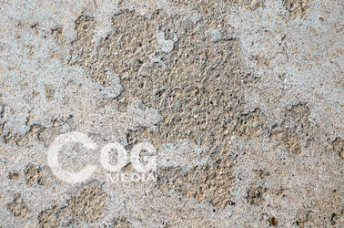 Rough Concrete Texture by ecogmedia