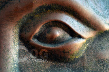 Close-Up Bronze Eye by ecogmedia