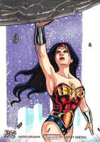DC Women of Legend - WONDER WOMAN by JASONS21