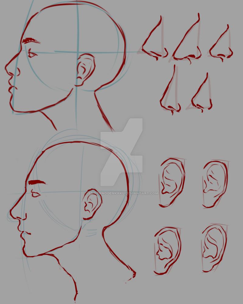 Profile Study by AnataNoGenkaku