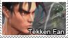 Tekken Fan by Icoltus