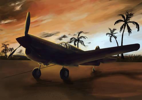 P-40 at dawn