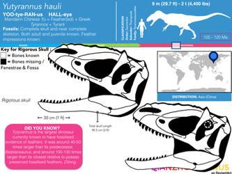 Yutyrannus hauli skull skeletal by Qianzhousaurus