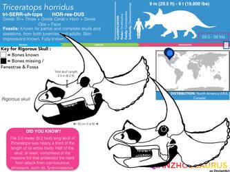 Triceratops horridus skull skeletal by Qianzhousaurus