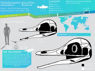 Halszkaraptor escuilliei skeletal infographic by Qianzhousaurus