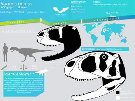 Rugops primus skeletal infographic